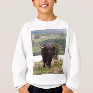 Black Highland cattle, Scotland Sweatshirt