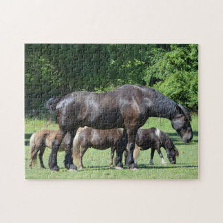 Black Horse And Ponies Jigsaw Puzzle