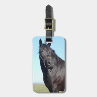 Black Horse And The Blue Sky Luggage Tag