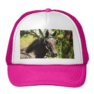 Black horse at National Drive Mesh Hats