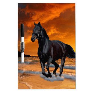 BLACK HORSE, BLACK STALLION, RUNNING AND FREE DRY ERASE WHITEBOARDS
