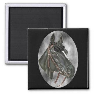 Black Horse Equine Art Portrait Print Magnet