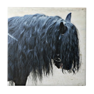 Black Horse Head Tile