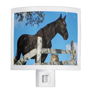 Black Horse Night Lite