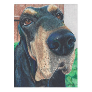 black hound post card