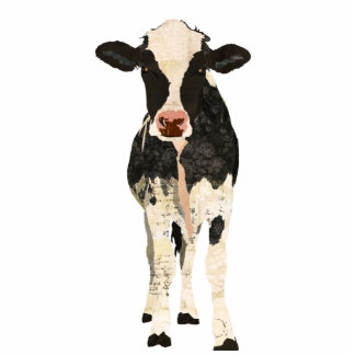 Black & Ivory Cow Sculpture Standing Photo Sculpture