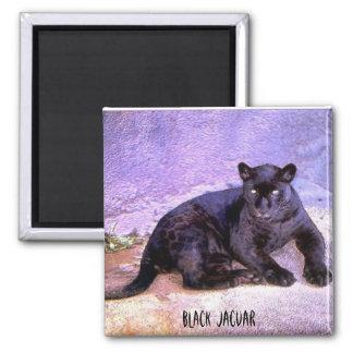 Black Jaguar, magnet