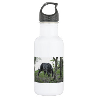 Black Jaguar Stalking 532 Ml Water Bottle