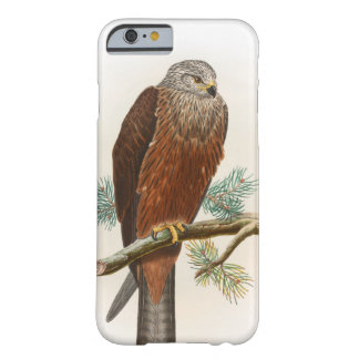 Black Kite Hawk John Gould Birds of Great Britain Barely There iPhone 6 Case
