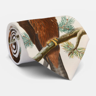 Black Kite Hawk John Gould Birds of Great Britain Tie