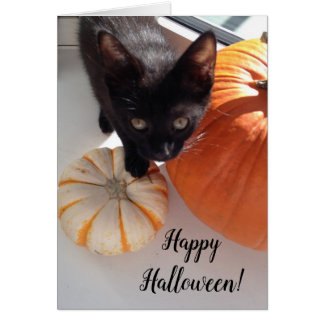 Black Kitten Pumpkin Happy Halloween Greeting Card