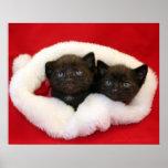 Black kittens in Santa's hat Posters