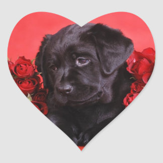 Black Lab and roses Heart Sticker