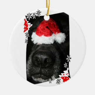 Black lab dog nose with santa hat photograph ceramic ornament