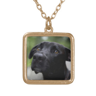 BLACK LAB GOLD PLATED NECKLACE