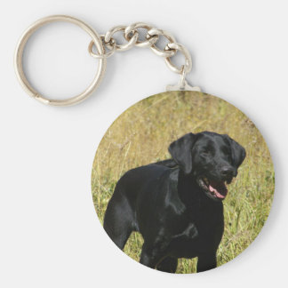 Black Lab in Field  Keychain