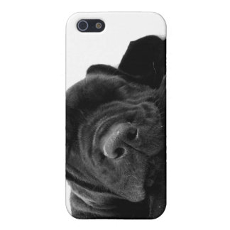Black Lab Puppy  iPhone Case Case For iPhone 5/5S