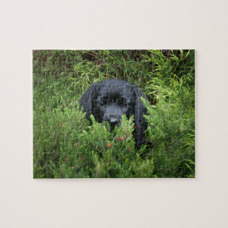 Black Lab Puppy Jigsaw Puzzle
