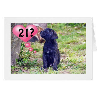 "BLACK LAB PUPPY SAYS ""ENJOY 21st BIRTHDAY!"" Card"