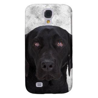 Black Labrador Dog