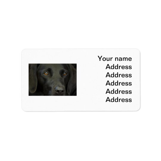 Black Labrador Dog Label