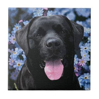Black Labrador - Forget Me Not Tile