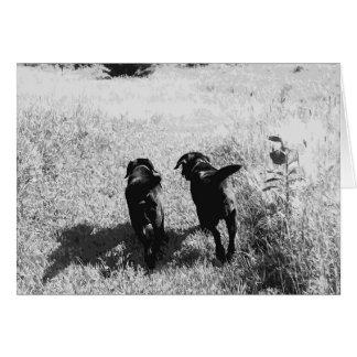 Black Labrador Friends Card