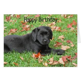 Black Labrador - Joy of Autumn Card
