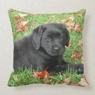 Black Labrador - Joy of Autumn Throw Pillow