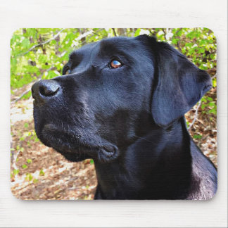 Black Labrador - Keep Looking Up Mouse Pad