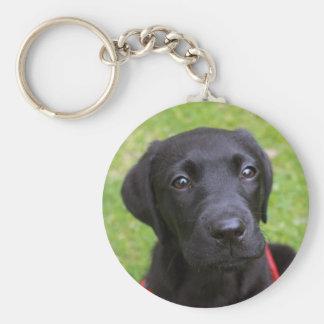 Black Labrador Key Ring Basic Round Button Keychain