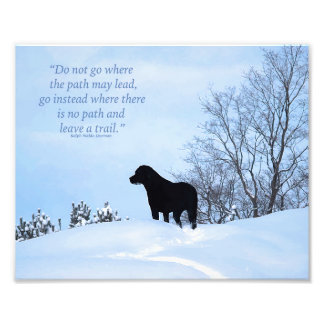 Black Labrador - Path Life Quote 2 Photo Print
