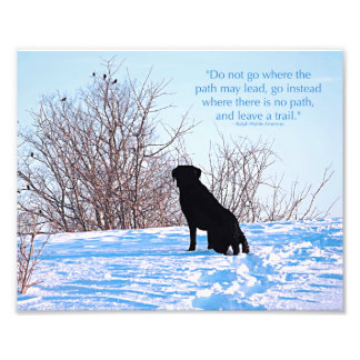 Black Labrador - Path Life Quote Photo Print