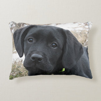 Black Labrador Puppy - Early Spring Hunt Accent Pillow