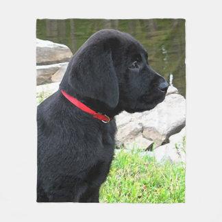 Black Labrador Puppy - Little Red Collar Fleece Blanket
