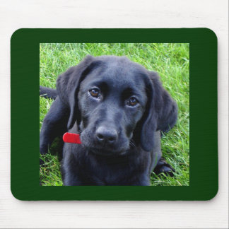 Black Labrador puppy mouse pad