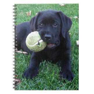 Black Labrador Puppy - Play Ball Notebook