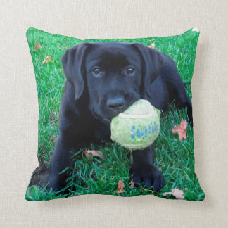 Black Labrador Puppy - Play Ball Throw Pillow