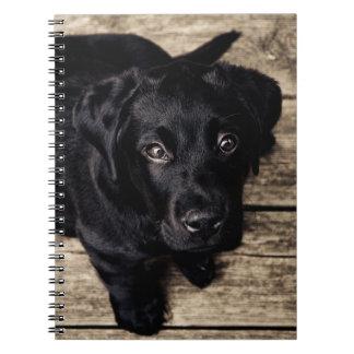 Black Labrador Puppy Spiral Notebooks