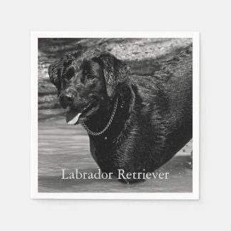 Black Labrador Retriever in Water Disposable Napkins