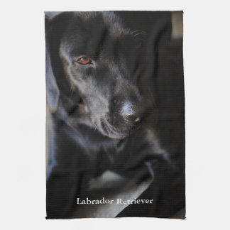 Black Labrador Retriever Kitchen Towel