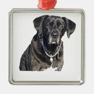 Black Labrador Retriever Square Metal Christmas Ornament