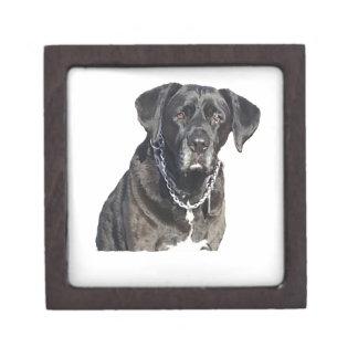 Black Labrador Retriever Premium Gift Boxes