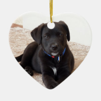 Black Labrador Retriever Puppy Ceramic Ornament