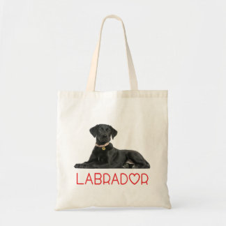 Black Labrador Retriever Puppy Dog - Black Lab