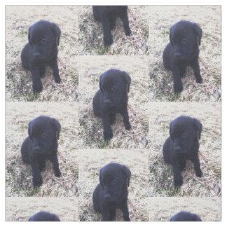 Black Labrador Retriever Puppy Fabric