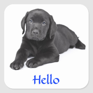 Black Labrador Retriever Puppy Hello Sticker