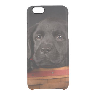 Black labrador retriever puppy in a basket clear iPhone 6/6S case