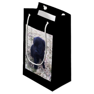 Black Labrador Retriever Puppy Small Gift Bag