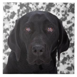Black Labrador Retriever Tile